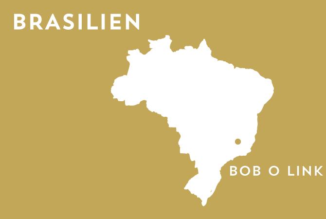 Bob o Link - Brasilien